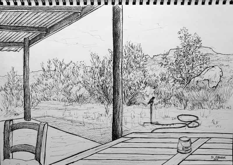Cedarberg Cabin, Landscape, pen drawing on paper, Damian Osborne-2