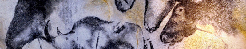 Chauvet Cave drawings